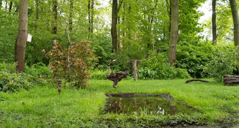 Inge's tuinhut